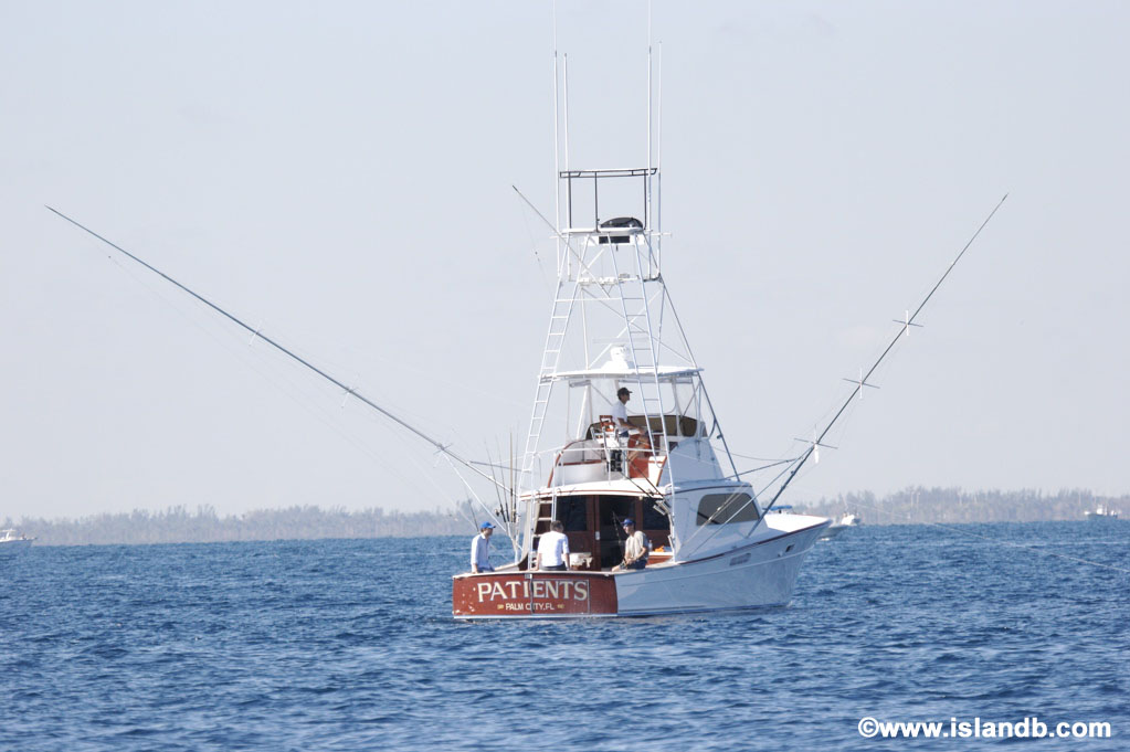 patients-sportfishing-boat.jpg
