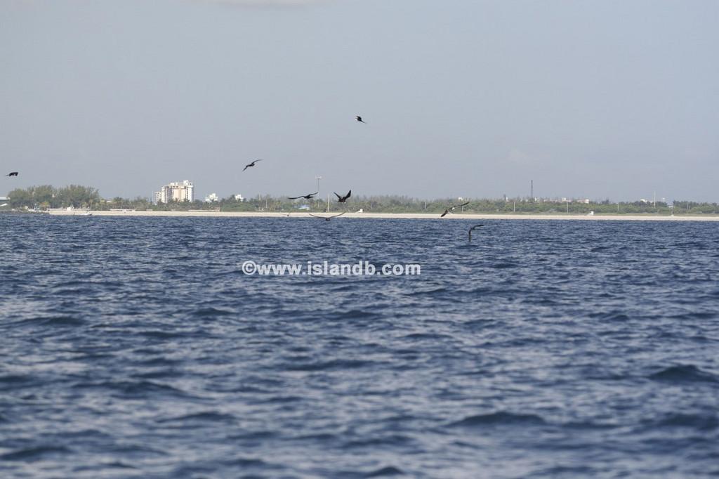 fishing-8-25-2007-02.jpg