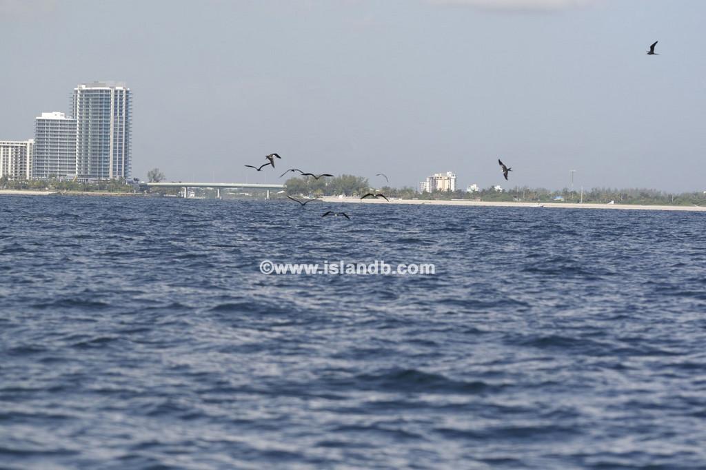 fishing-8-25-2007-03.jpg
