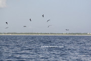fishing-8-25-2007-05.jpg