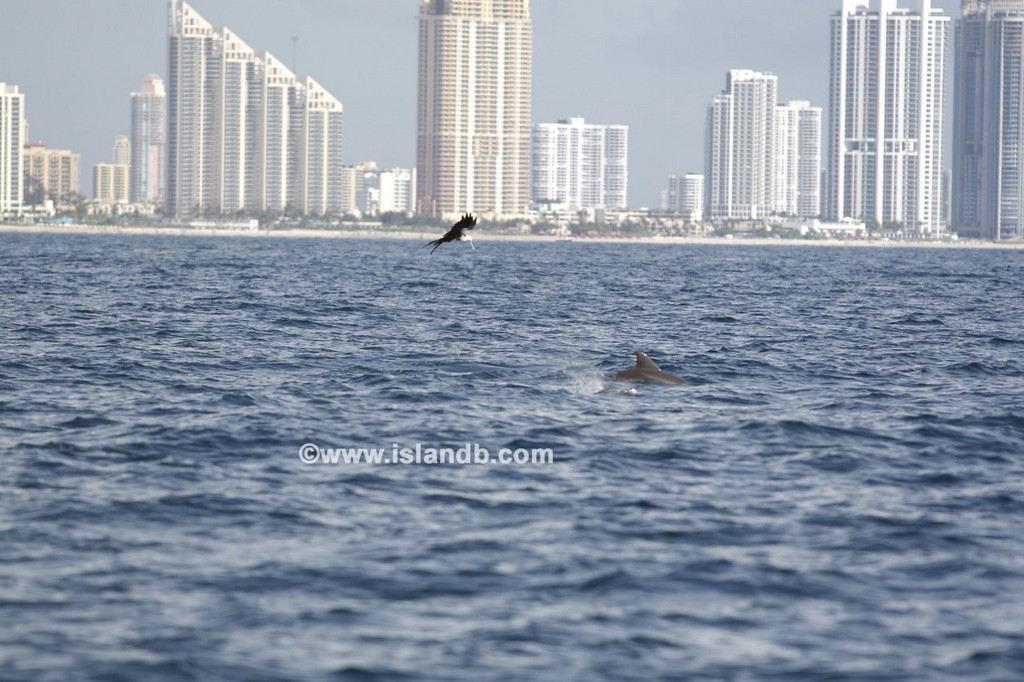 fishing-8-25-2007-10.jpg
