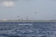 fishing-8-25-2007-17.jpg