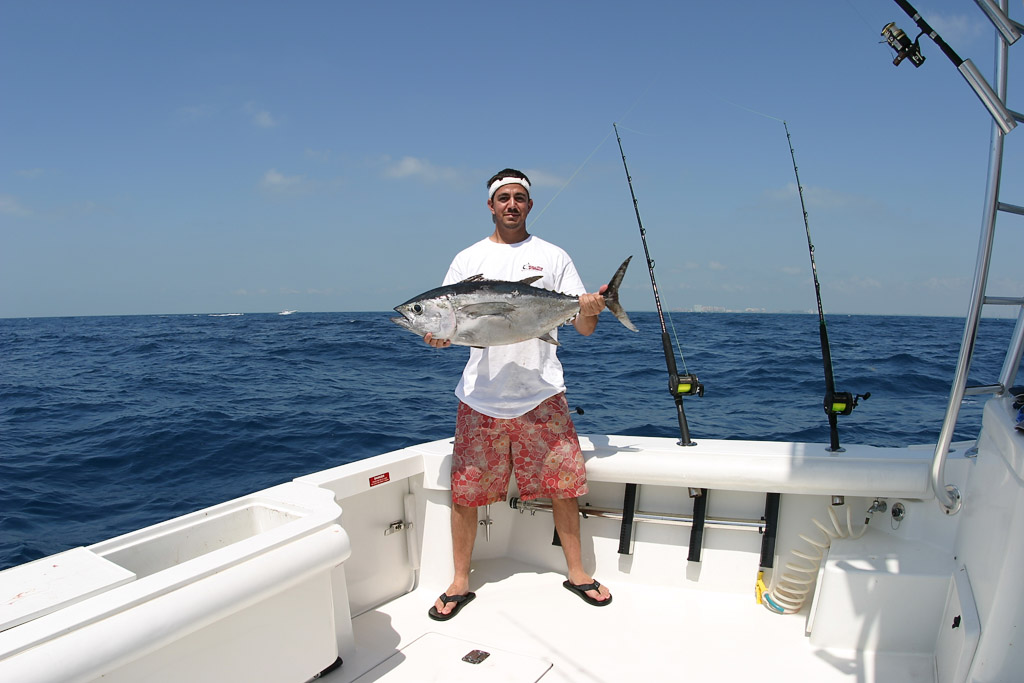 Slide show for gallery sport fishing photography gallery for Tuna fishing show